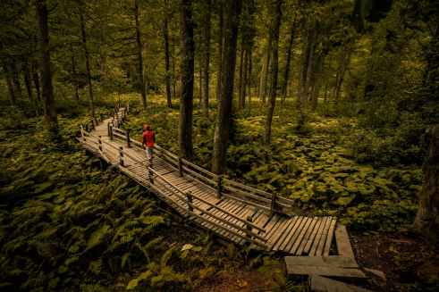 person wearing red jacket walking on wooden bridge